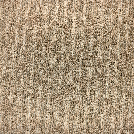 50 Gen Carpet Tile - 24x24 Carpet Tile